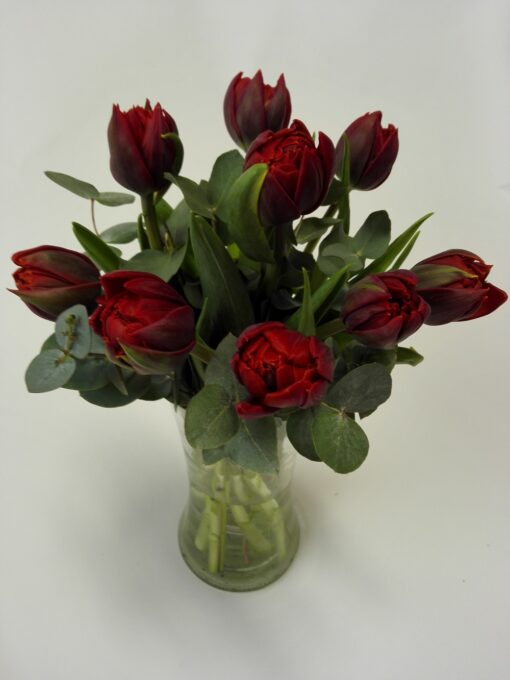Nádherné plnokvěté tulipány 9 ks