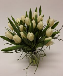 Bílé tulipány 17 ks