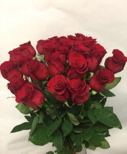 Rudé růže 30 ks - dlouhé