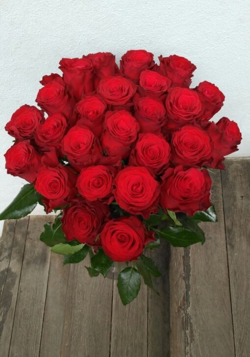 Rudé růže 25 ks – dlouhé stonky