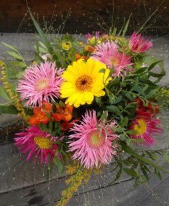 Rozkošná barevná kytice s astrami