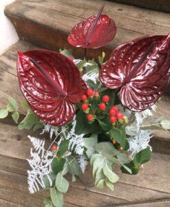Zimní kytice ze tří tmavě bordó anthurií
