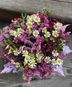 Nádherná luční podzimní kytička