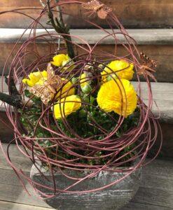 Květináč s ranunkulusem