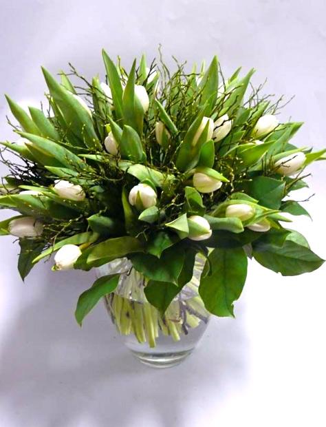 Kytice bílých tulipánů 25 ks